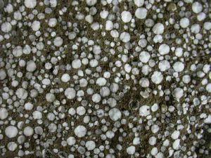 Воздухововлекающие добавки в бетоне